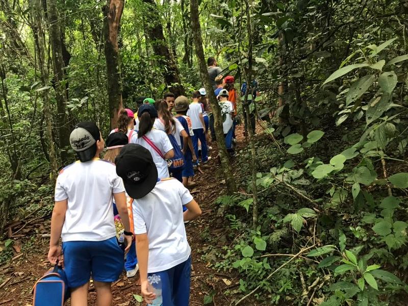 Pontos turísticos de Londrina: Mata dos Godoy
