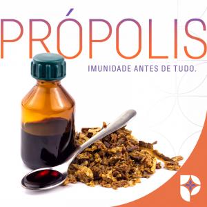 Própolis na Farmácia Passiphlora em Londrina
