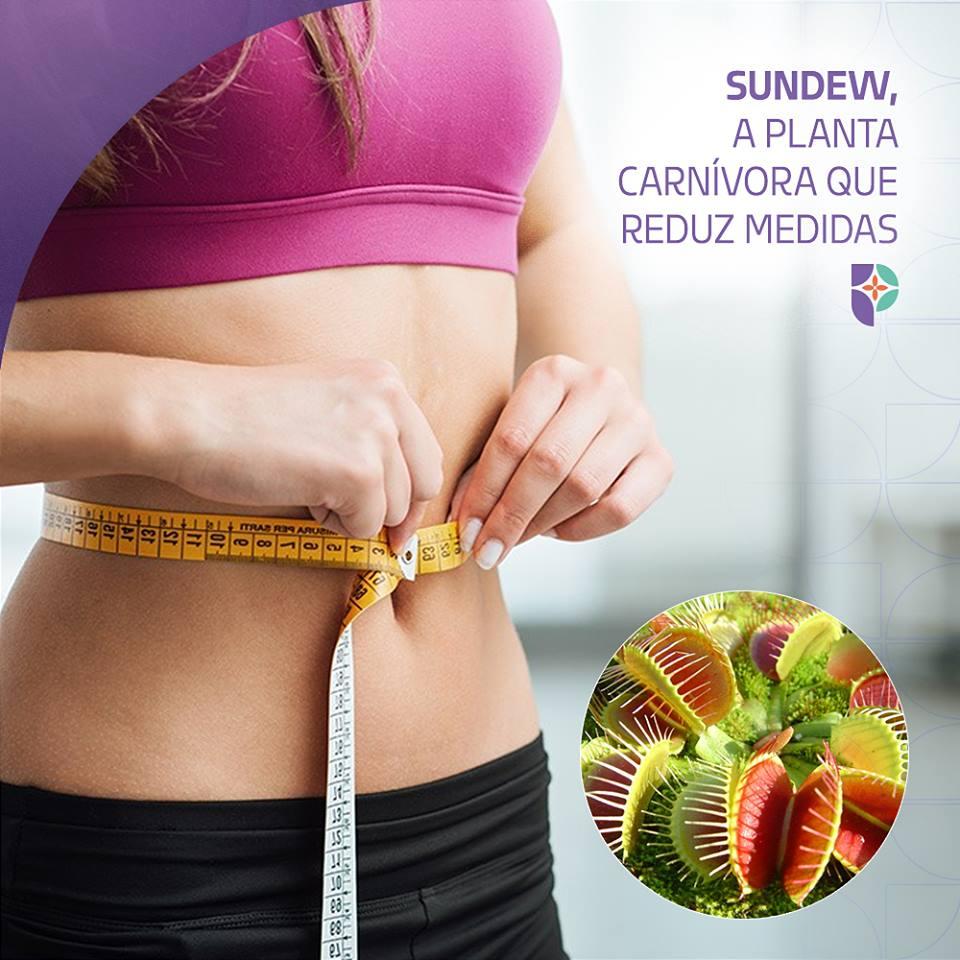 Fórmulas derivadas do Sundew têm o poder de quebrar gordura na Passiphlora