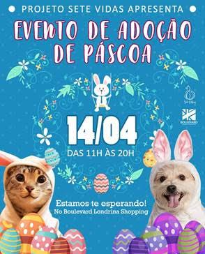 Feira de Adoção de Cães e Gatos