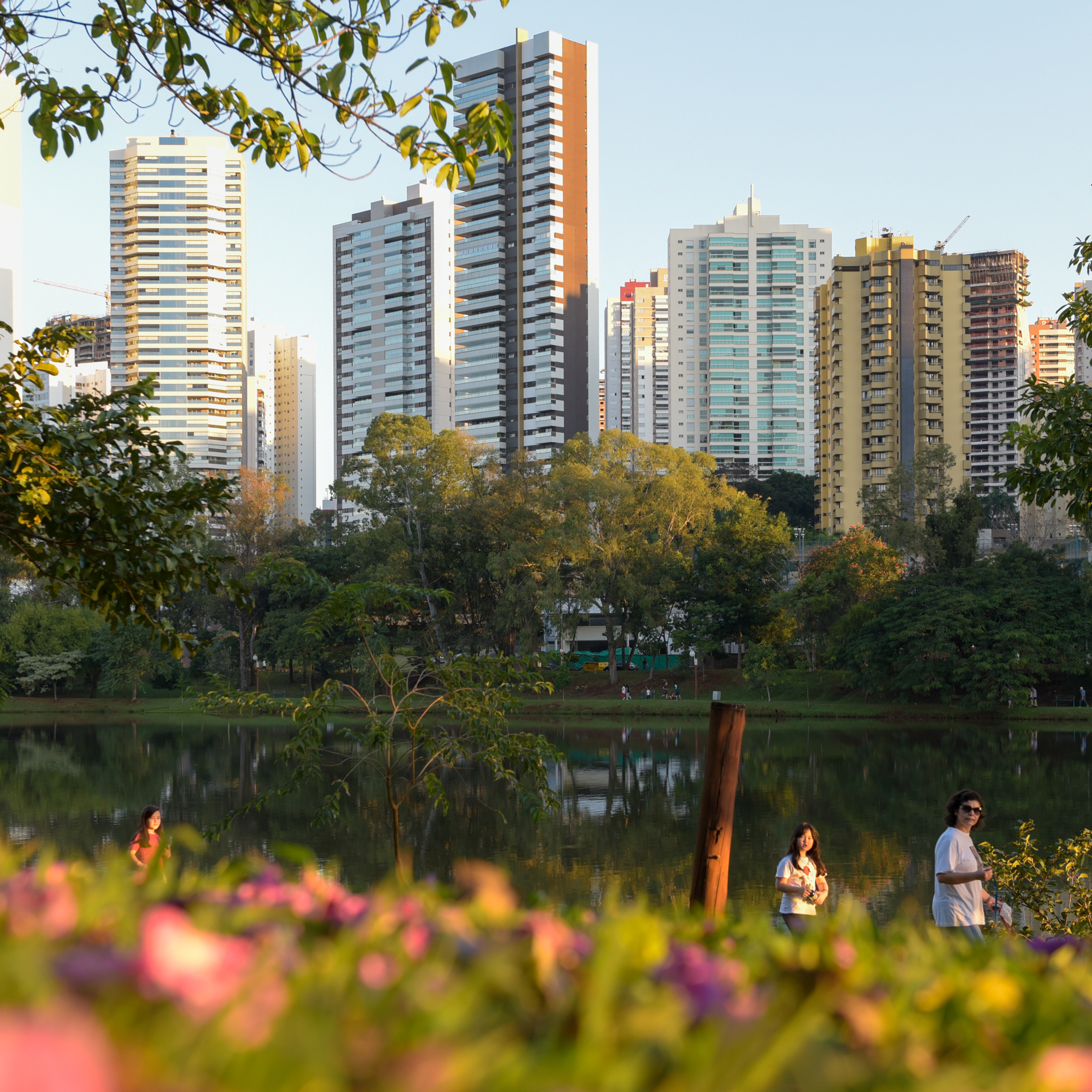 Wilson Vieira fotografo Londrina-1-25