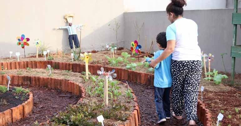 Uma horta para cada unidade escolar de Londrina