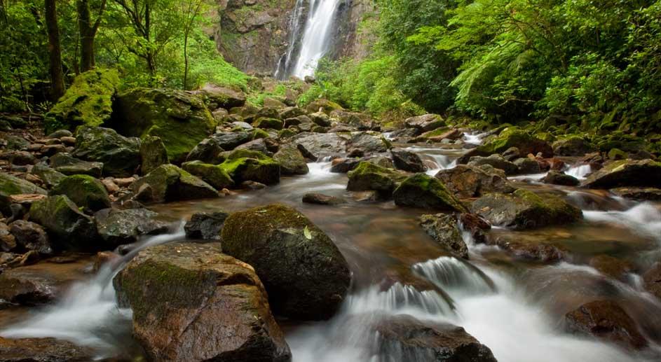 Turismo de natureza é chave para desenvolvimento econômico regional em áreas naturais bem conservadas