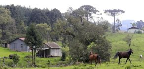 Reservas de Patrimônio Natural recebem por serviços ambientais