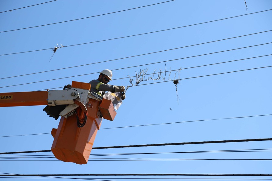 Copel promove mutirão de limpeza nas redes elétricas